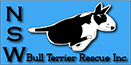 NSW Bull Terrier Rescue