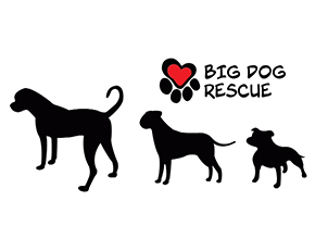 Big Dog Rescue