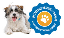 PS_Rescue_Badge