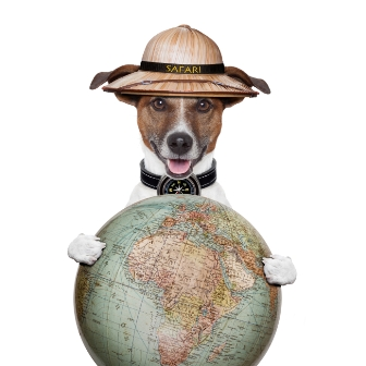 A Guide to Worldwide Pet Ownership
