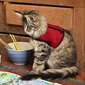 Pet-care11