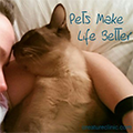 Pet-care4