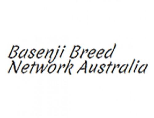 Basenji Breed Network