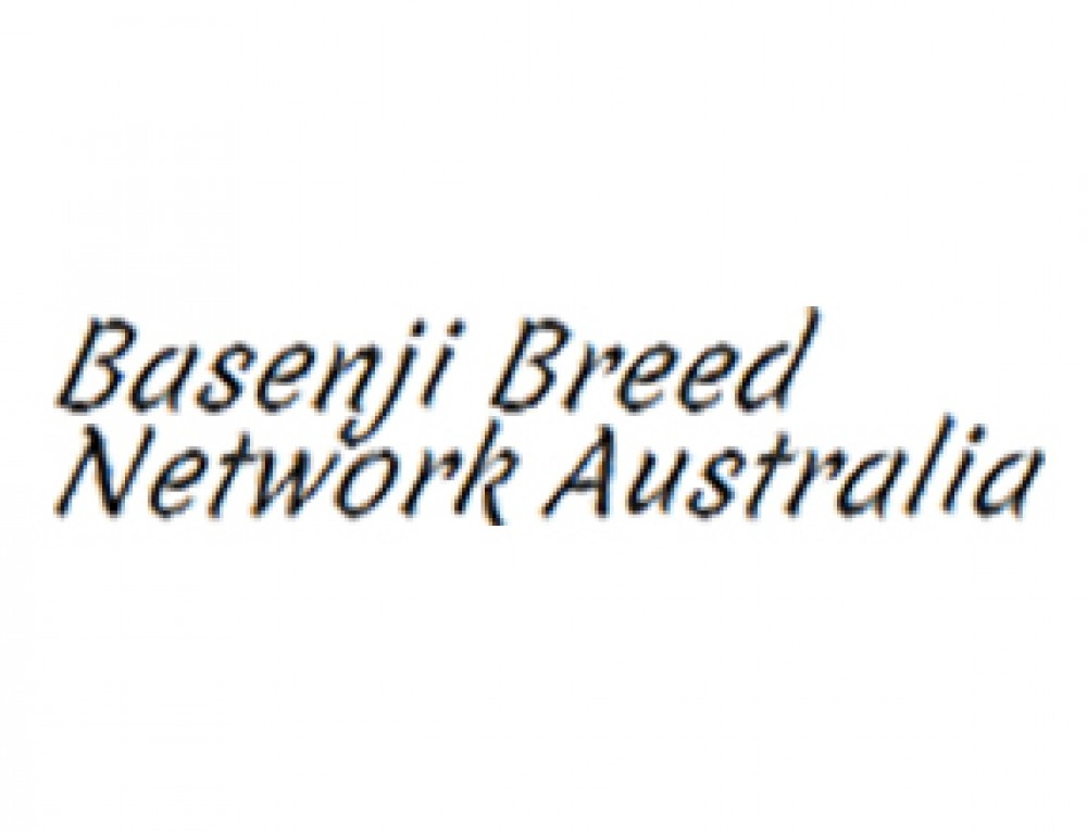 Basenji Breed Network