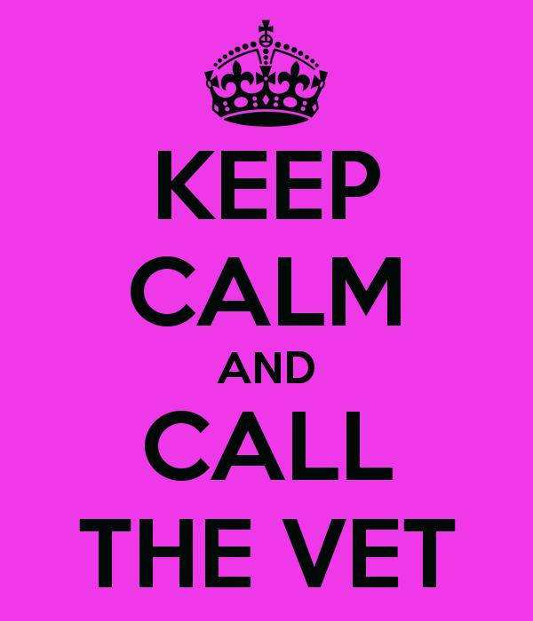 Is pet insurance good value?