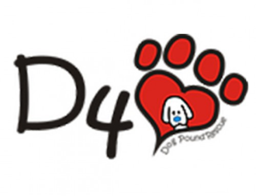 D4 – Desperate for Love Dog Pound Rescue