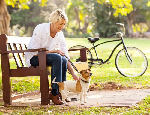The Benefits of Owning a Pet for Older People