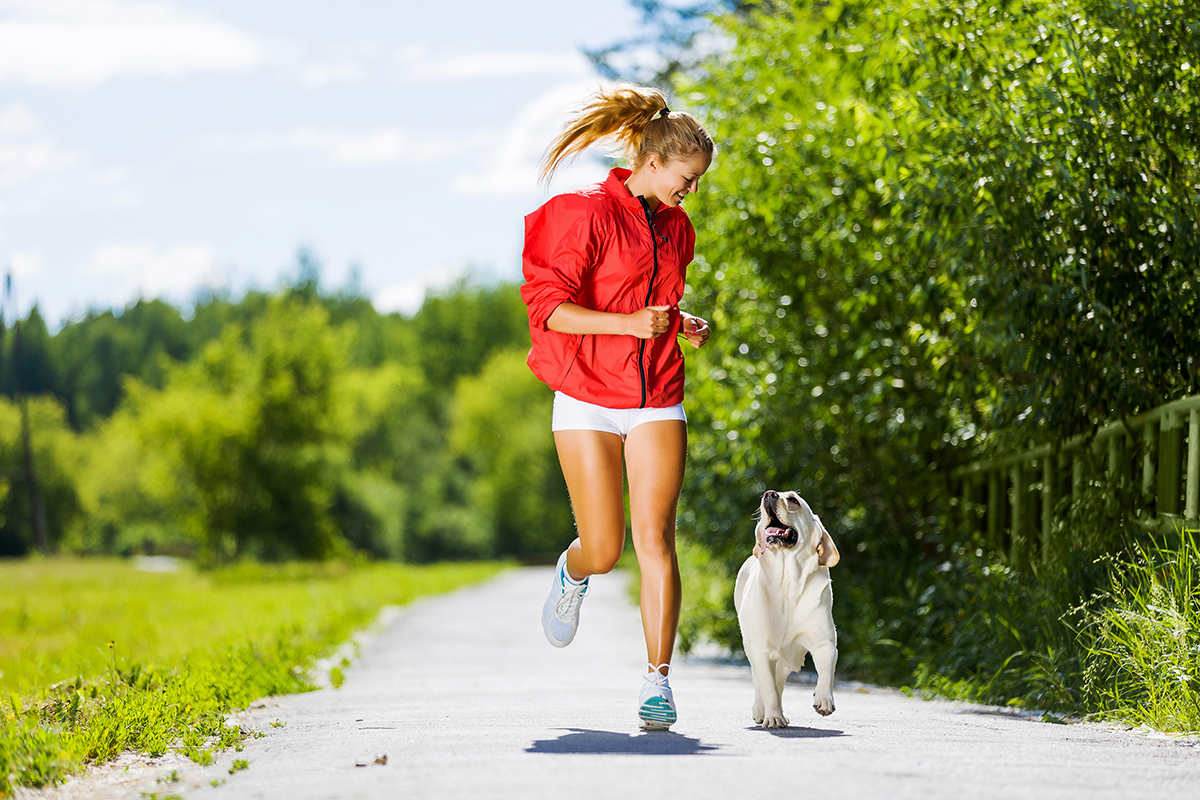 Tips for Choosing the Perfect Dog Walker