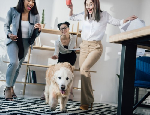 Take your Dog to Work Day – June 22 – Get Ready!
