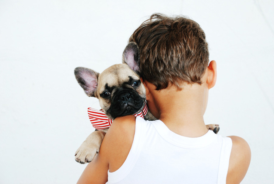 boy in white singlet holding French bulldog