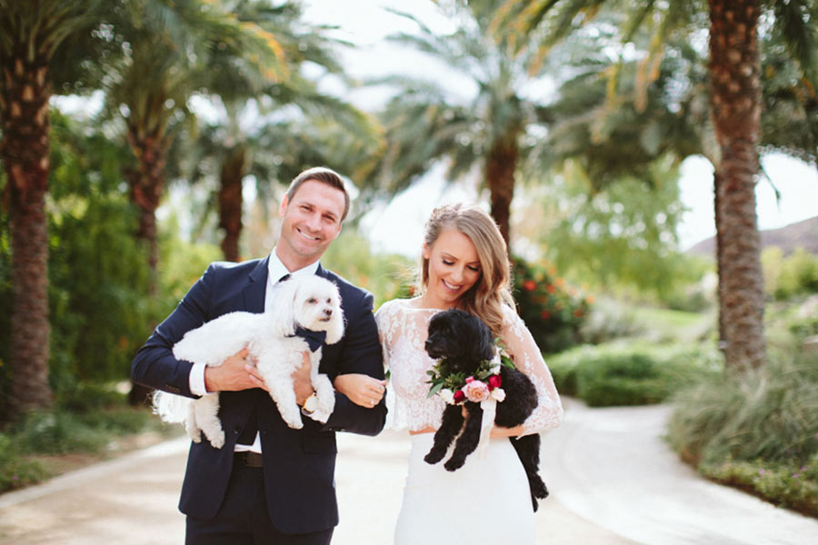 bride and groom each holding a dog