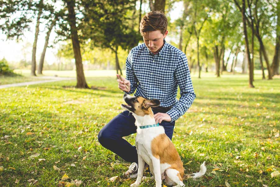 young man training his dog in the park