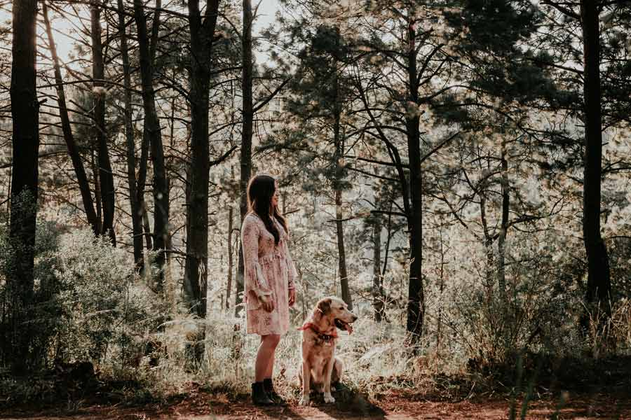 dog owner in woods with dog