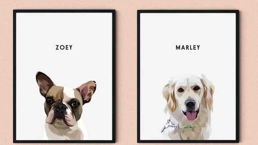framed pet photos