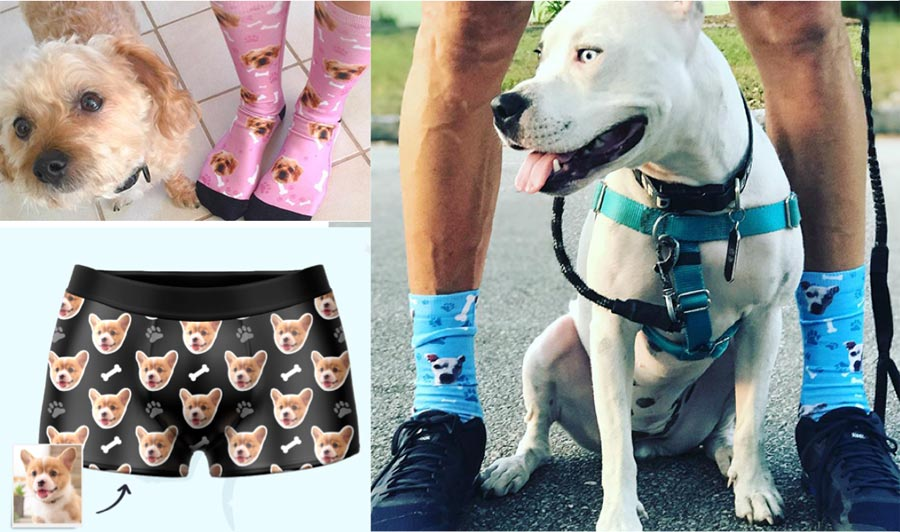 pet socks and boxers, gifts for pet lovers