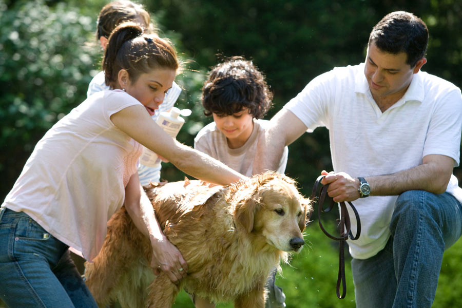 young family with golden retriever, pet health insurance