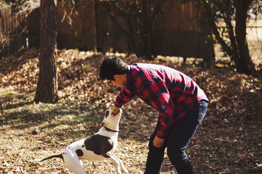man playing with dog outdoors