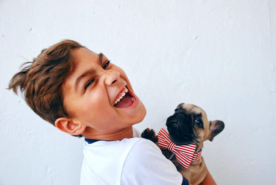 happy young boy with french bulldog puppy